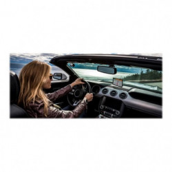 GARMIN GPS DriveSmart? 61 LMT-S (SE)