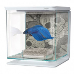 MARINA Kit aquarium équipé Tete de mort pour betta - 2 L