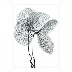 Cadre pour coffre ou étagere Fleur Gris - 18 x 24 cm - Blanc