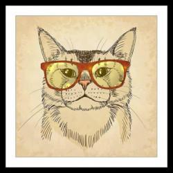 CHAT Affiche encadrée 50x50cm - Chat a lunettes