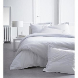 TODAY PREMIUM Drap housse Percale 160 CHANTILLY