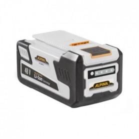ALPINA Batterie 48 V 2AH