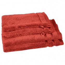 VENT DU SUD Lot 2 serviettes 30x50 cm + 2 gants CALLISTO - O