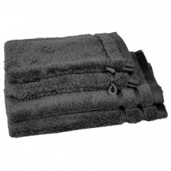 VENT DU SUD Lot 2 serviettes 30x50 cm + 2 gants CALLISTO - G
