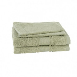 JULES CLARYSSE Lot de 2 serviettes + 2 gants de toilette ROY