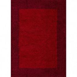 VEGA Tapis de salon Shaggy - 80 x 150 cm - Rouge