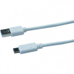 CONTINENTAL EDISON Câble USB Type C 3.1 - 1 m - Blanc