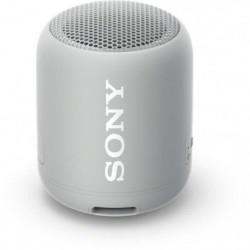 Sony SRSXB12H.CE7 Enceinte portable - Bluetooth - Extra Bass