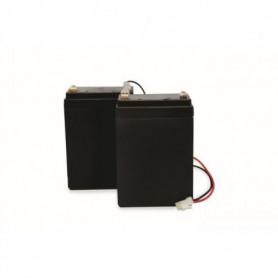 SCS SENTINEL Kit de 2 batteries de secours 2,2 AH