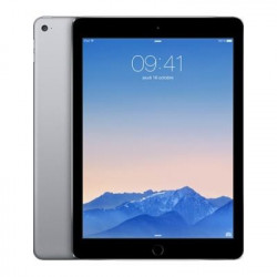 Apple iPad Air 2 16Go WIFI Gris sideral - Grade B