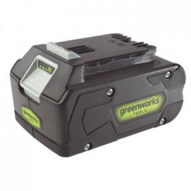 GREENWORKS TOOLS Batterie Li-Ion - 24 V - 4 Ah