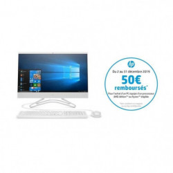 "HP PC All-in-One - 23,8""FHD UWVA - AMD Athlon 300U - RAM 4Go"