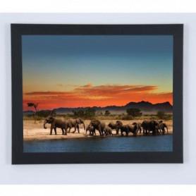 Image encadrée Eléphants et couché de soleil - 67x87cm